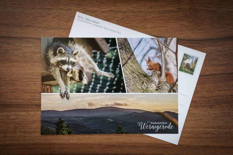 Postkarte: Natur erleben